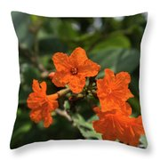 Brilliant Orange Tropical Flower Throw Pillow