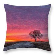 Brilliant Skies Throw Pillow