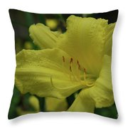 Brilliant Yellow Daylilies Flowering In A Garden Throw Pillow