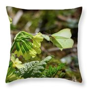 Brimstone On Cowslip Primrose Throw Pillow
