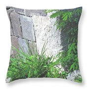Brimstone Wall Throw Pillow