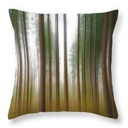 Bring Me Home Throw Pillow