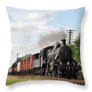 Brining In The Goods Throw Pillow