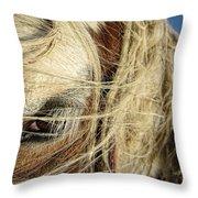 Brisk Breeze Throw Pillow