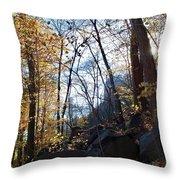 Brisk Throw Pillow