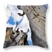 Bristlecone Great Basin Portrait Throw Pillow
