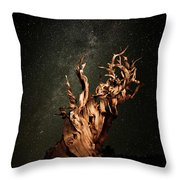 Bristlecone Nights Throw Pillow