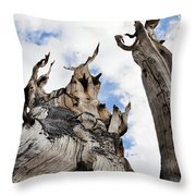 Bristlecone Pine Great Basin Throw Pillow