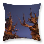 Bristlecone Pines At Sunset With A Rising Moon Throw Pillow