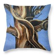 Bristlecone Tree No.4 Throw Pillow