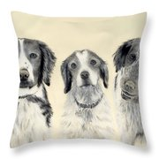 Brittanys  Throw Pillow