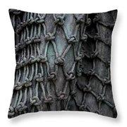 Brnze Net  Throw Pillow