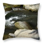 Broad River  Throw Pillow