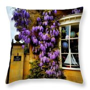 Broadway Spring 1 Throw Pillow