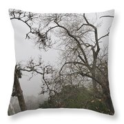Broken Heart In  Fog Throw Pillow