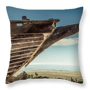 Broken Hull Throw Pillow