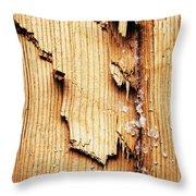 Broken Old Stump Spruce Throw Pillow