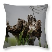 Broken Root Stump In Water  Throw Pillow