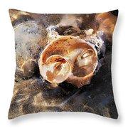 Broken Whelk Shell Throw Pillow