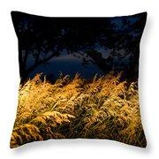 Brome Grass In A Field Near Princeton Throw Pillow