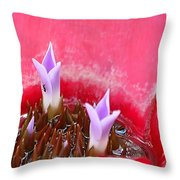 Bromeliad With Ant Throw Pillow