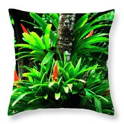 Bromeliads El Yunque National Forest Throw Pillow