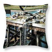 Bronze Eagle And Water Fall Throw Pillow