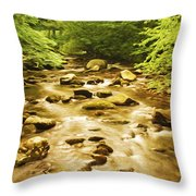 Bronze Stream Throw Pillow