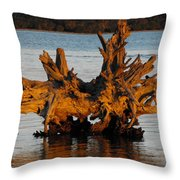 Bronzed Wood Throw Pillow