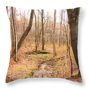 Brook In The Woods Throw Pillow