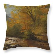 Brook In Woods Throw Pillow