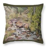 Brook Throw Pillow by Saundra Johnson