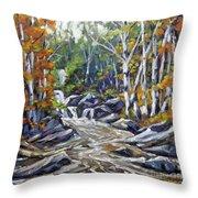 Brook Traversing Wood Throw Pillow
