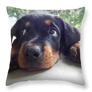 Brooke Throw Pillow