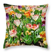 Brookgreen Gardens Tulips Throw Pillow