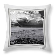 Brookings Throw Pillow