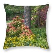 Brookside Gardens 8 Throw Pillow