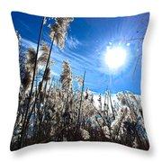 Broom Grass Beauty Throw Pillow