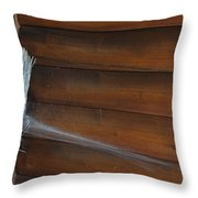 Broom In Waiting Throw Pillow