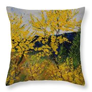 Brooms Throw Pillow
