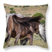 Broomtails Throw Pillow