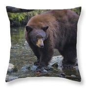 Brother Bear Throw Pillow