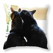 Brotherly Cat Love Throw Pillow