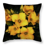 Brothers And Sisters Throw Pillow