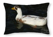 Brown And White Duck Throw Pillow