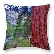 Brown Bark Throw Pillow