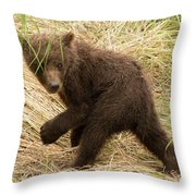 Brown Bear Cub Turns To Look Back Throw Pillow