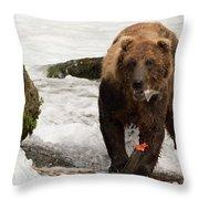Brown Bear Eating Salmon Tail Beside Rocks Throw Pillow