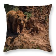 Brown Bear Watches From Steep Rocky Outcrop Throw Pillow