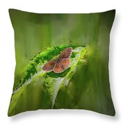 Brown Butterfly #h6 Throw Pillow by Leif Sohlman